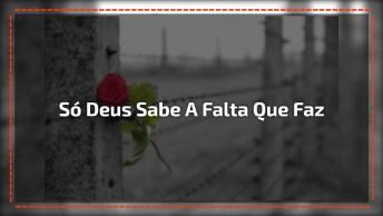Vídeo Música 'Falta Que Você Faz' Com Fernando E Tiago Fonseca, Perfeito. . .