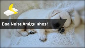 Boa Noite Amiguinhos Do Facebook, Com Muita Fofura E Carinho!