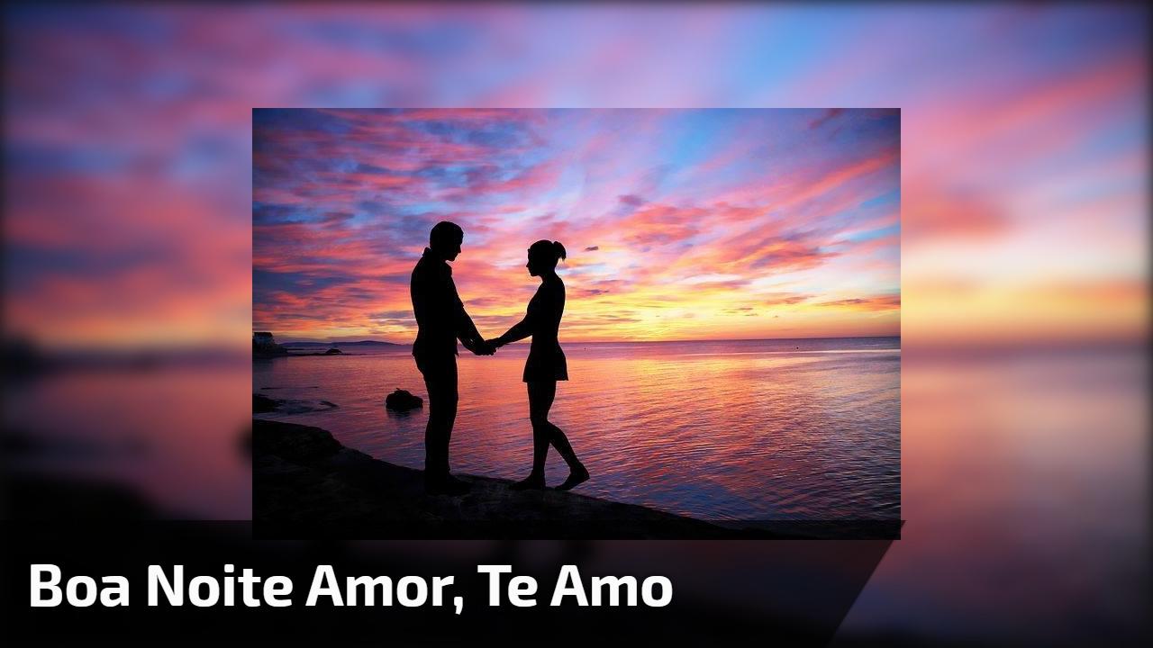 Boa Noite amor, te amo