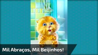 Boa Noite Com Gatinho Cantando, Um Vídeo Super Fofo De Boa Noite!