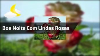 Boa Noite Com Lindas Imagens De Rosas Para Você!