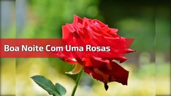 Boa Noite Com Flores Vermelhas Boa Noite Com Lindas Flores