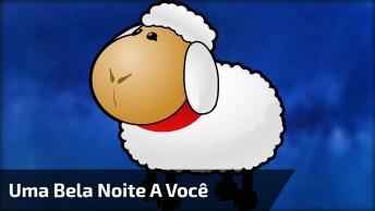 Frases De Boa Noite Para Whatsapp, Envie Para Seus Contatinhos!
