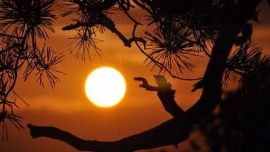 Não Existe Amor Impossível - Mensagem De Amor Para Desejar Boa Noite.