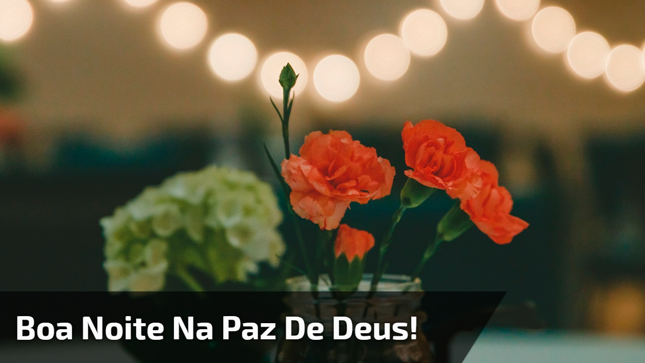 Boa noite na paz de Deus!