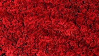 Eu Quero Amar Você, Hoje, Amanhã E Sempre!
