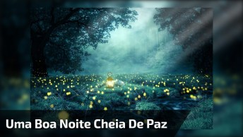 Mensagem De Boa Noite Desejando Uma Noite Tranquila E Cheia De Paz!