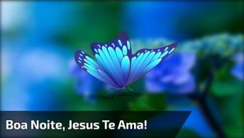 Mensagem De Boa Noite, Deus Abençoe Sua Noite, Tenha Um Bom Descanso!
