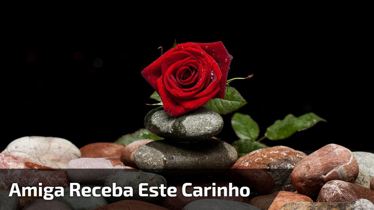 Que A Noite Traga Paz, Amor E Carinho Para Sua Vida