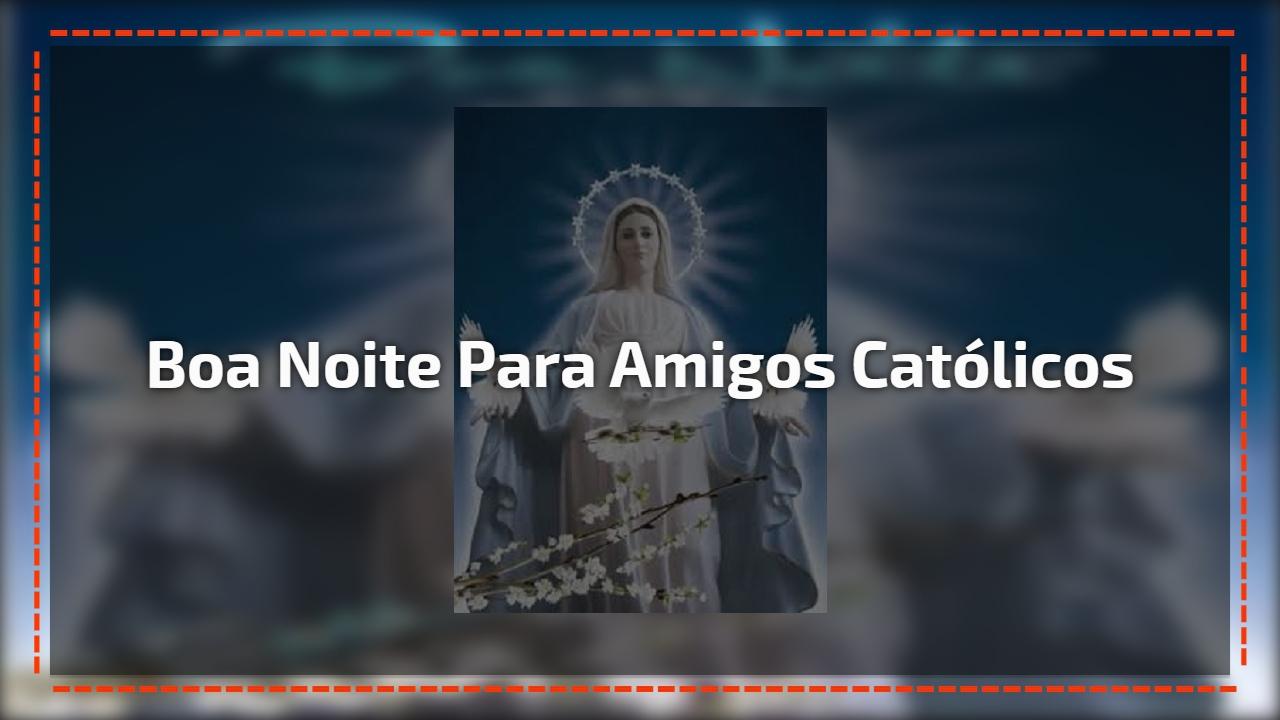 Oração Da Noite Nossa Senhora Aparecida Rogai Por Nós: Ave Maria, Oração Da Mãe Que Nos Intercede A Deus, Rogai