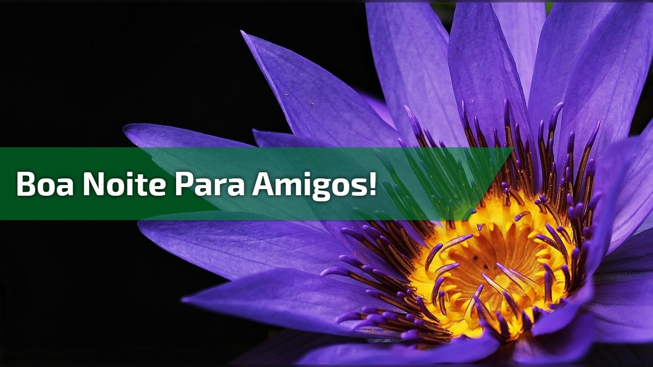 Mensagem de Boa Noite para Amigos! Que Deus abençoe sua noite!!!