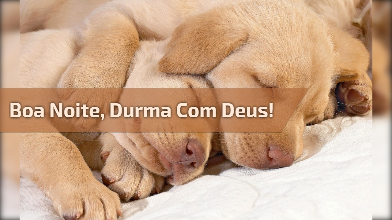 Boa Noite, durma com Deus!