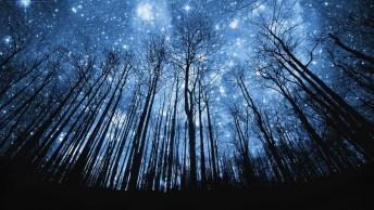 Que Deus Abençoe Sua Noite, E Lhe Proteja De Todo Mal!