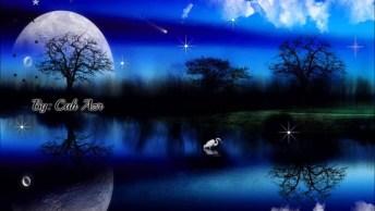 Desejo A Você Uma Noite Prospera E Cheia De Paz!