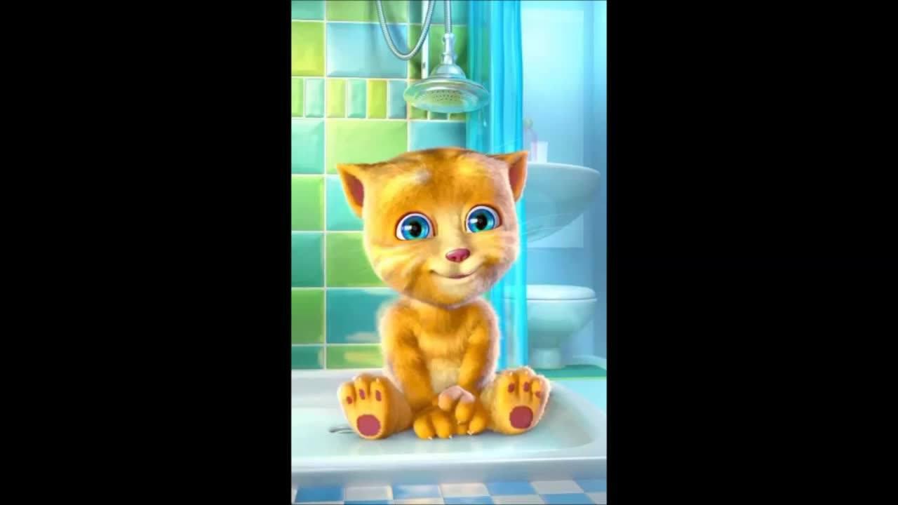 Mensagem de boa noite positiva com gatinho