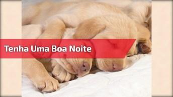 Tenha Uma Boa Noite De Sono Para Repor As Energias!