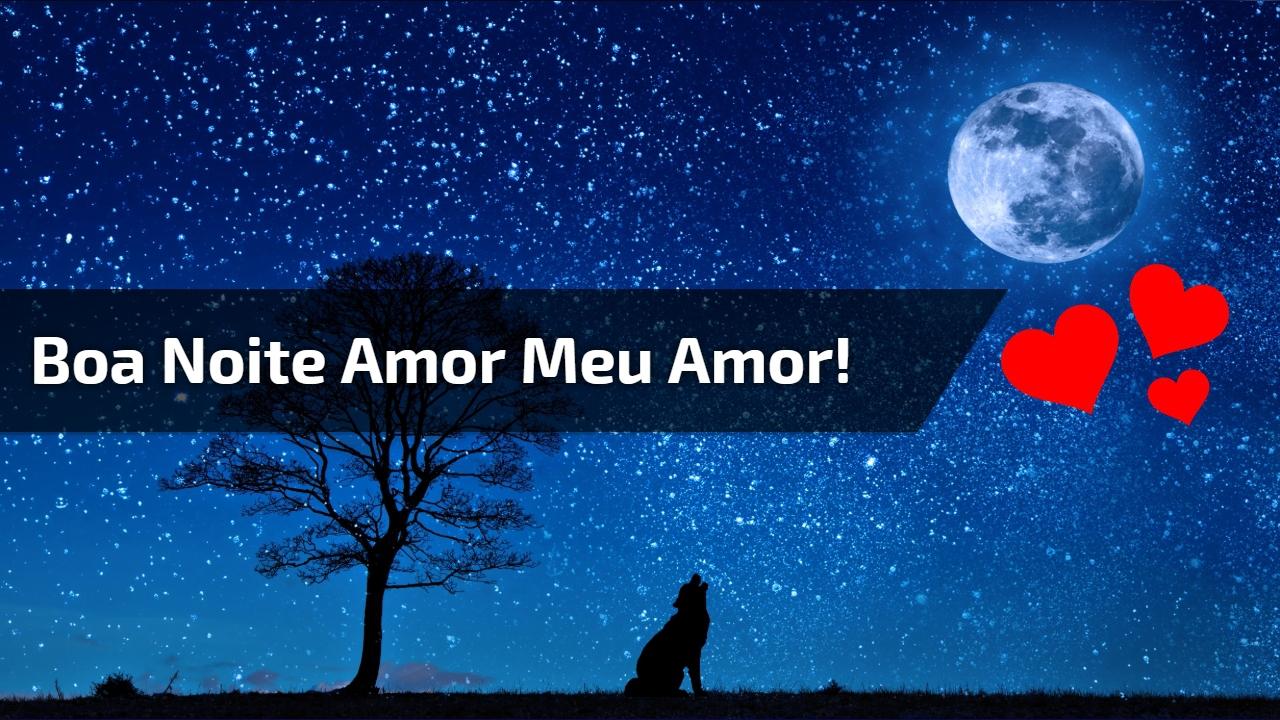 Boa noite amor meu amor!
