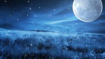 Tenha Uma Maravilhosa Noite, Confie Em Deus Sempre!