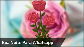 Vídeo De Boa Noite Gospel, Lindo E Ideal Para Enviar Pelo Whatsapp!