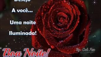 Vídeo De Bom Noite Com Uma Linda Rosa, Para Enviar Pelo Whatsapp!