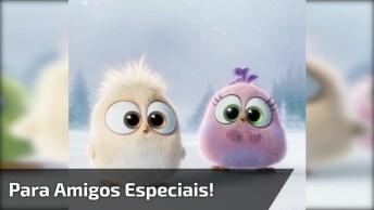Vídeo Fofo De Boa Noite, Para Enviar Pelo Whatsapp Com Amigos Especiais!