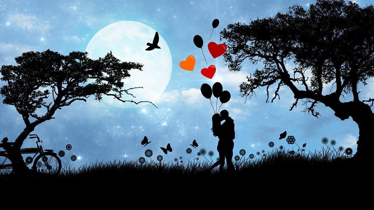 Você é a cor dos meus dias, Boa Noite amor