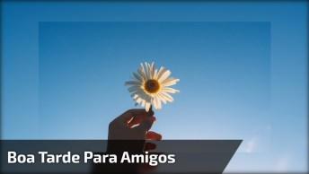 Boa Tarde, Amigos - Uma Linda Mensagem Para Compartilhar No Facebook!