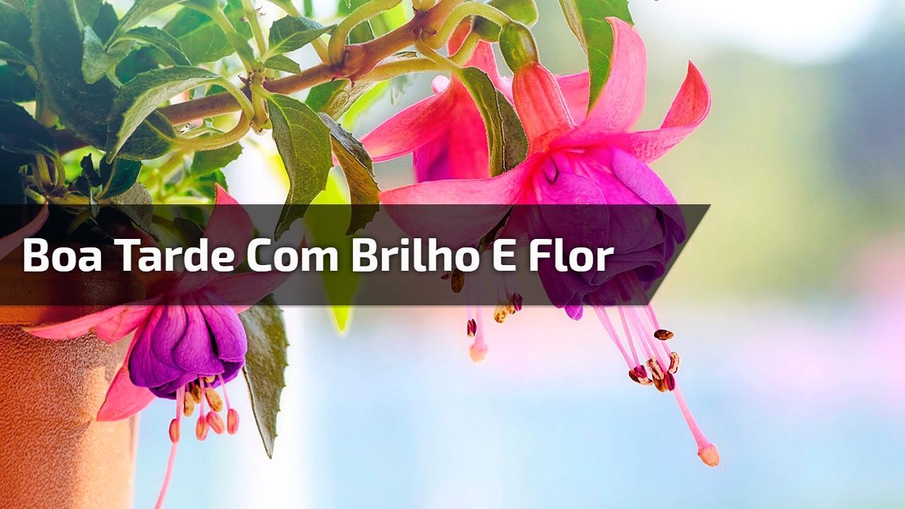 Boa tarde com brilho e flor, para compartilhar no Facebook!!!