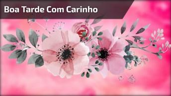 Boa Tarde Com Carinho Para Seus Amigos E Amigas Do Facebook!