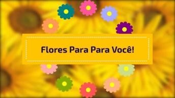 Boa Tarde Com Flores Para Amiga Ou Amigo, Perfeito Para Whatsapp!