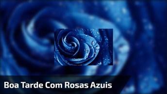 Boa Tarde Com Rosas Azuis, Se Apegue A Quem Te Põe Para Cima E Te Ama!