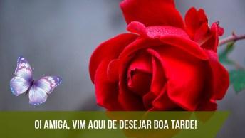 Boa Tarde Com Uma Rosa, Perfeito Para Compartilhar No Facebook!