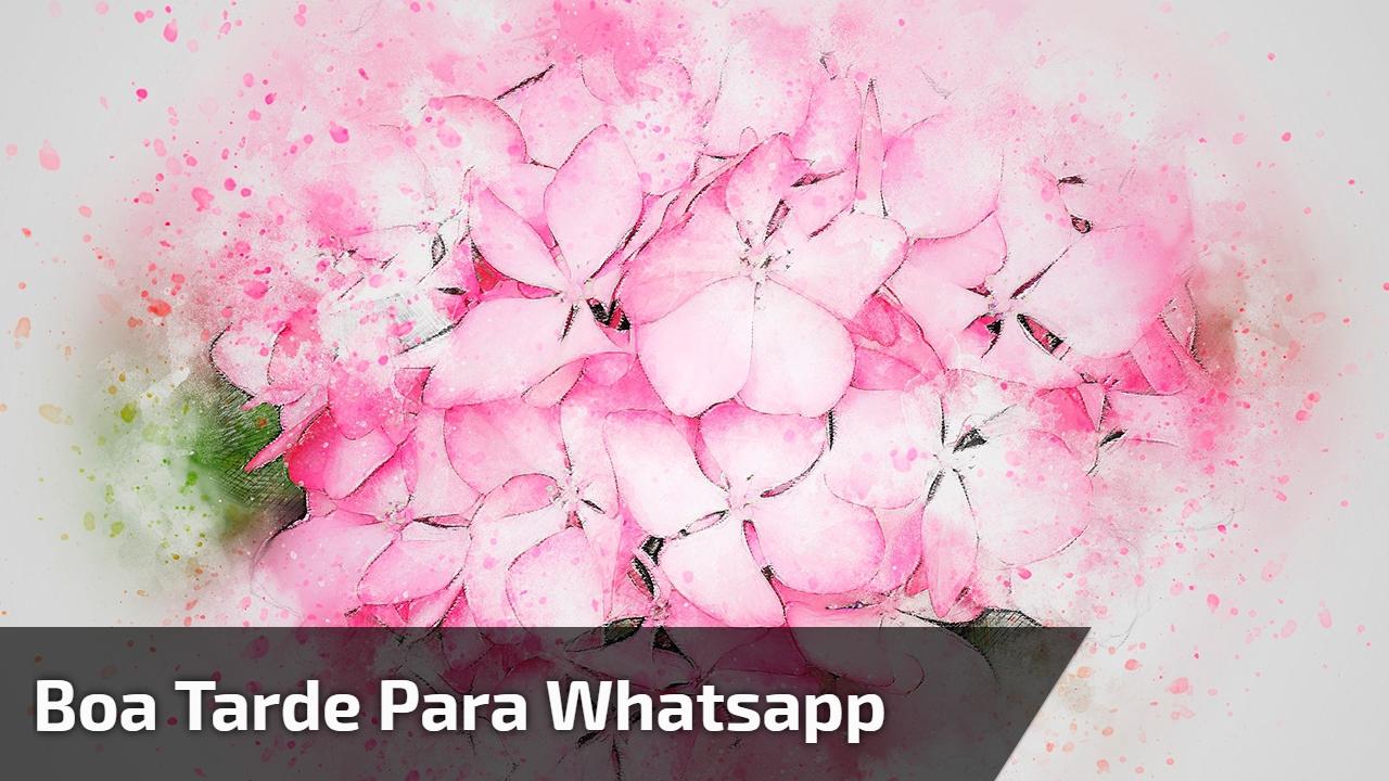 Boa tarde para Whatsapp