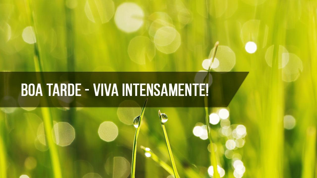 Boa Tarde! Viva a vida intensamente, curta cada momento, cada dia!!!