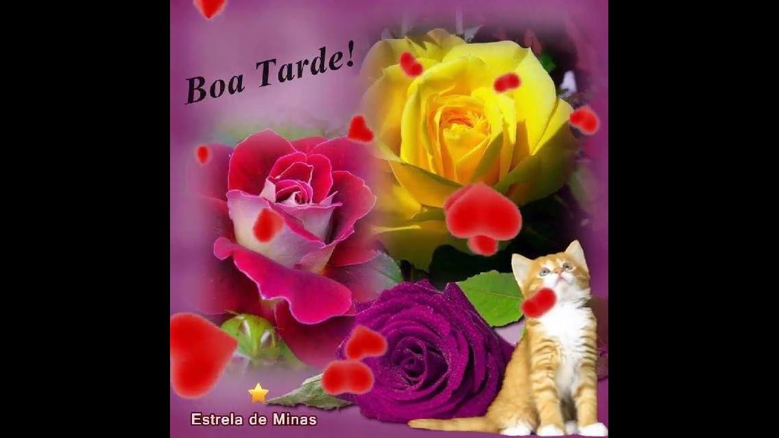 Mensagem De Boa Noite Especial Com Flores Earlyyearwallpaper