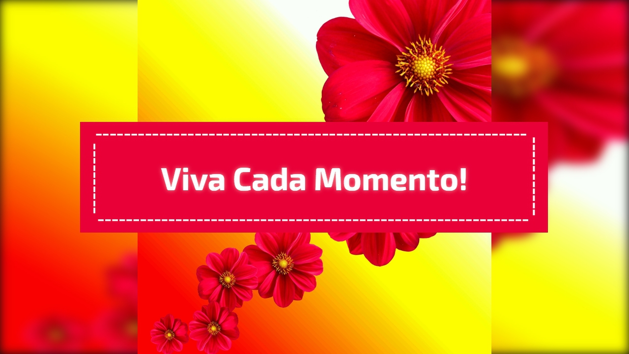 Viva cada momento!