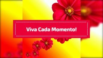 Mensagem De Boa Tarde Para Amigos! Viva Cada Momento, Ria Todos Os Dias!