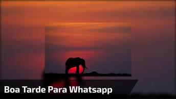 Mensagem De Boa Tarde Para Whatsapp, A Vida É Um Poema De Beleza!