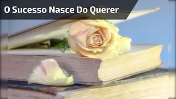 Mensagem De José De Alencar Para Desejar Boa Tarde, Compartilhe!
