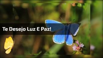 Mensagem Linda De Boa Tarde Para Compartilhar No Facebook!