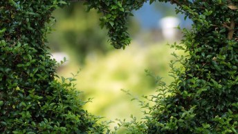 Mensagem Romântica De Boa Tarde - Para Uma Linda Tarde Cheia De Amor!