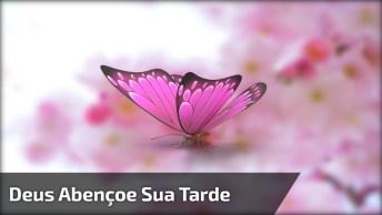 Vídeo Com Mensagem De Boa Tarde, Deus Abençoe Sua Tarde, Confie Sempre No Senhor