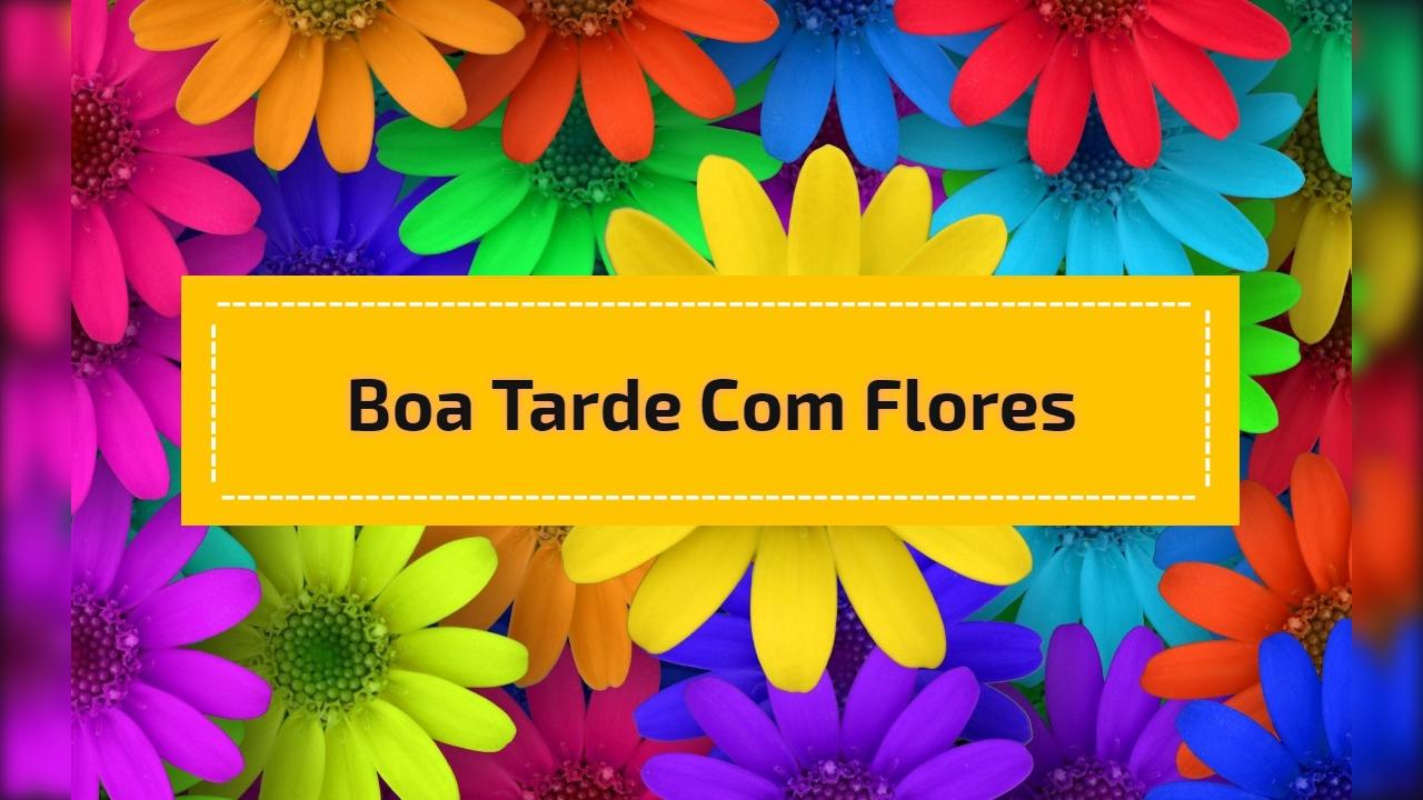 Boa Tarde com flores