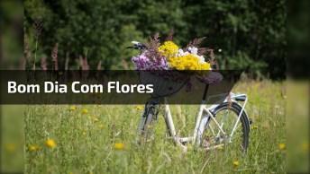 As Flores São Algo Lindo E Maravilhoso, E Um Bom Dia Com Elas É Muito Lindo!