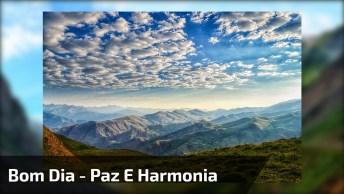 Bom Dia A Todos Amigos E Amigas Que Amam A Paz E Harmonia No Mundo!