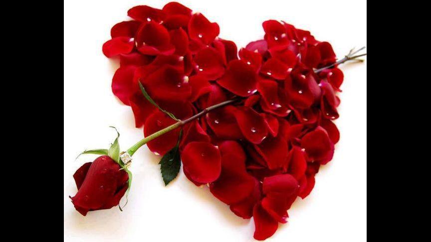 Bom dia apaixonado, envie esta linda mensagem para seu amor