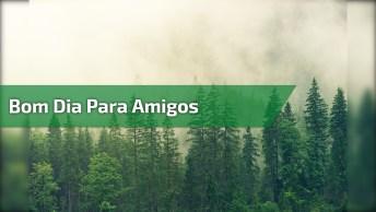 Bom Dia, Bom Dia, Bom Dia, Vamos Compartilhar Com Amigos Do Facebook!