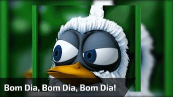 Bom Dia Cambada, Para Você Enviar Nos Grupos Do Whatsapp!