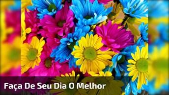 Bom Dia Com Mensagem E Flores, Compartilhe Com Suas Amigas Do Facebook!