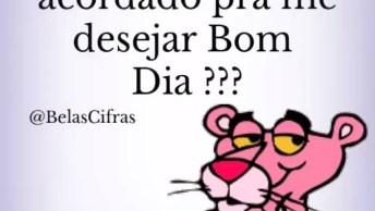Bom Dia Com Pantera Cor-De-Rosa, Será Que Já Tem Alguém Acordado( A) ?